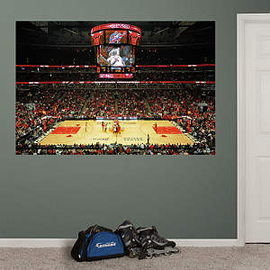Chicago Bulls Arena Mural Fathead Wall Decal
